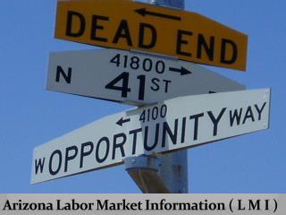 Arizona Labor Market Info rm ation ( L M I )