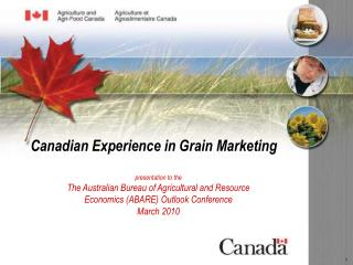 Canadian Experience in Grain Marketing