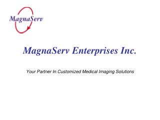 MagnaServ Enterprises Inc.