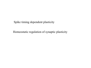 Spike timing dependent plasticity