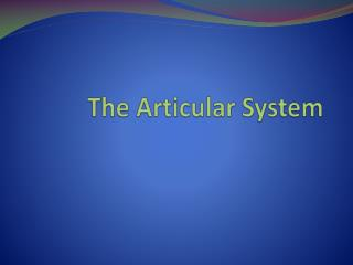 The  Articular  System