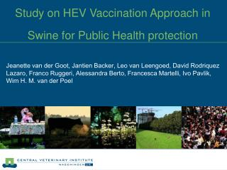 Study on HEV Vaccination Approach in Swine for Public Health protection
