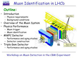 Muon Identification in LHCb