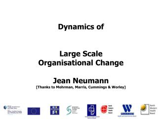 Dynamics of Large Scale  Organisational Change Jean Neumann
