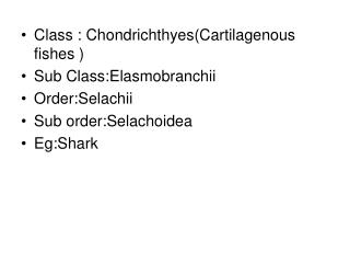 Class : Chondrichthyes(Cartilagenous fishes ) Sub Class:Elasmobranchii Order:Selachii