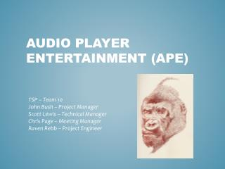 Audio Player Entertainment (APE)