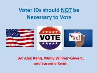 Voter IDs should  NOT  be Necessary to Vote