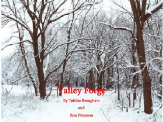 Valley Forge By Tahlisa Brougham  and  Sara Peterson