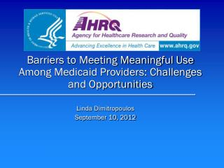 Barriers to Meeting Meaningful Use Among Medicaid Providers: Challenges and Opportunities