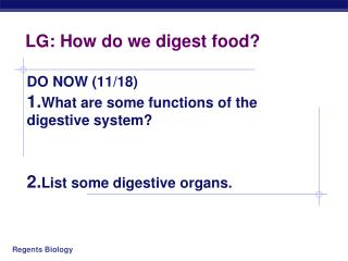 LG: How do we digest food?