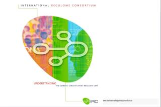internationalregulomeconsortium