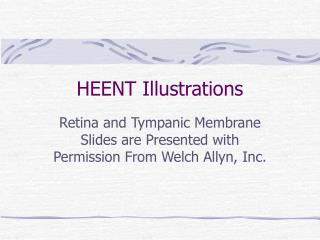 HEENT Illustrations