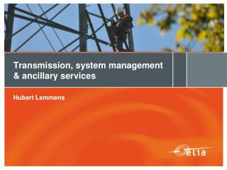 Transmission, system management & ancillary services