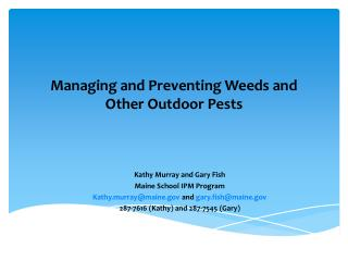 Managing and Preventing Weeds and Other Outdoor Pests