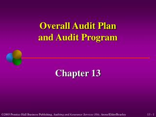 Overall Audit Plan and Audit Program
