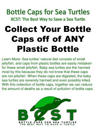 Bottle Caps for Sea Turtles BCST: The Best Way to Save a Sea Turtle