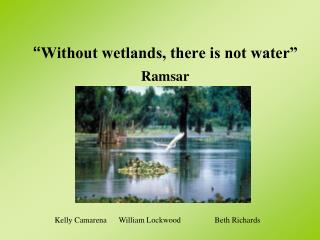 """ Without wetlands, there is not water"" Ramsar"