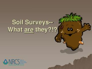 Soil Surveys-- What  are  they?!?