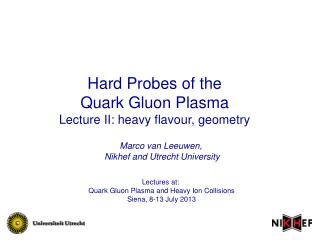 Hard Probes of the  Quark Gluon Plasma Lecture II: heavy flavour, geometry