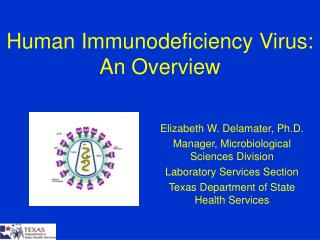 Human Immunodeficiency Virus: An Overview