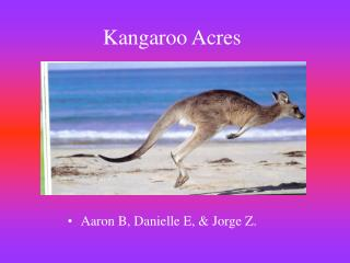 Kangaroo Acres