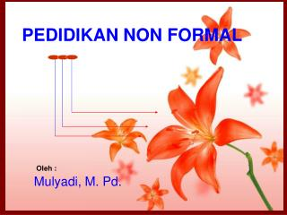 PEDIDIKAN NON FORMAL