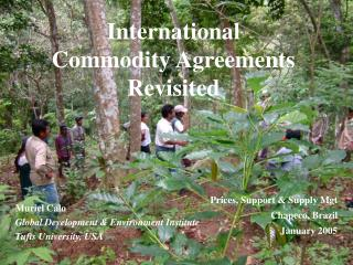 International Commodity Agreements Revisited