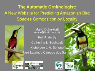 The Automatic Ornithologist: