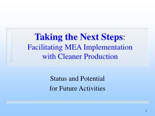 Taking the Next Steps :  Facilitating MEA Implementation with Cleaner Production