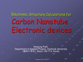 Electronic Structure Calculations for Carbon Nanotube Electronic devices