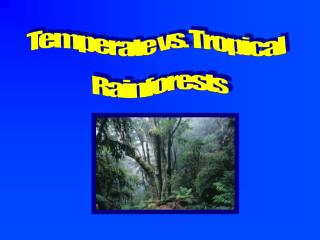 Temperate vs. Tropical  Rainforests