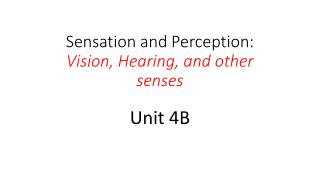 Sensation and Perception:  Vision, Hearing, and other senses