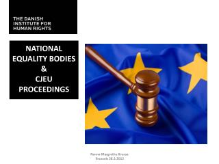 National Equality Bodies  & CJEU Proceedings