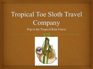 Tropical Toe Sloth Travel Company