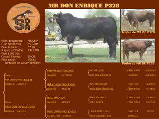 Madre de MR DE P328