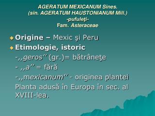 AGERATUM MEXICANUM Sines. (sin. AGERATUM HAUSTONIANUM Mill.) -pufuleţi- Fam. Asteraceae