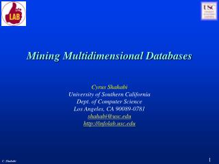 Mining Multidimensional Databases