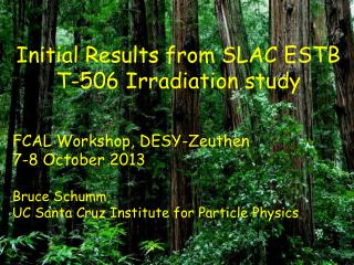 Initial Results from SLAC ESTB T-506 Irradiation study FCAL Workshop, DESY-Zeuthen