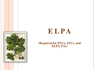 E L P A (Required for DTCs, STCs, and ELPA TAs)