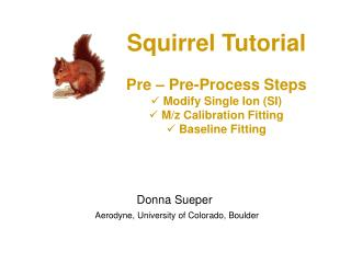 Squirrel Tutorial Pre – Pre-Process Steps  Modify Single Ion (SI)  M/z Calibration Fitting