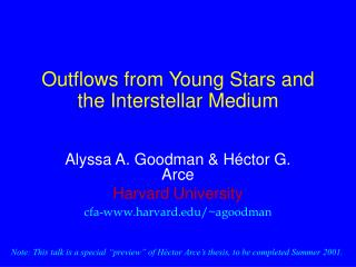Outflows from Young Stars and the Interstellar Medium