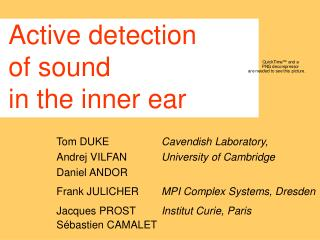 Active detection  of sound in the inner ear