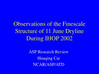 Observations of the Finescale  Structure of 11 June Dryline During IHOP 2002