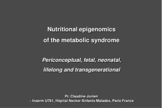 Nutritional epigenomics of the metabolic syndrome  Periconceptual, fetal, neonatal,  lifelong and transgenerational