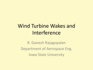 Wind Turbine Wakes and Interference