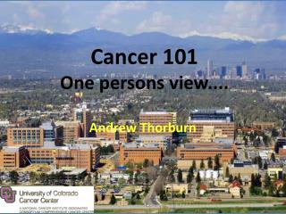 Cancer 101 One persons view....