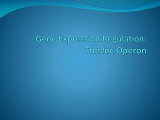 Gene Expression Regulation: The  lac  Operon