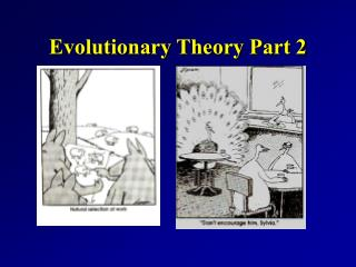 Evolutionary Theory Part 2