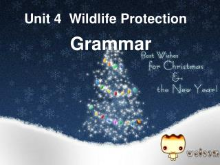 Unit 4  Wildlife Protection