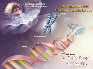 Fish Reproduction: Special Genetic Issues